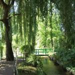 Les jardins de Claude Monet